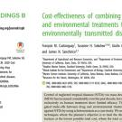 Cost-effectiveness of combining drug and environmental treatments for environmentally transmitted diseases